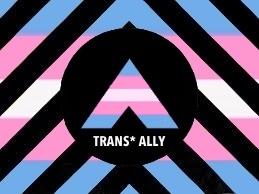 Transgender Ally Flag