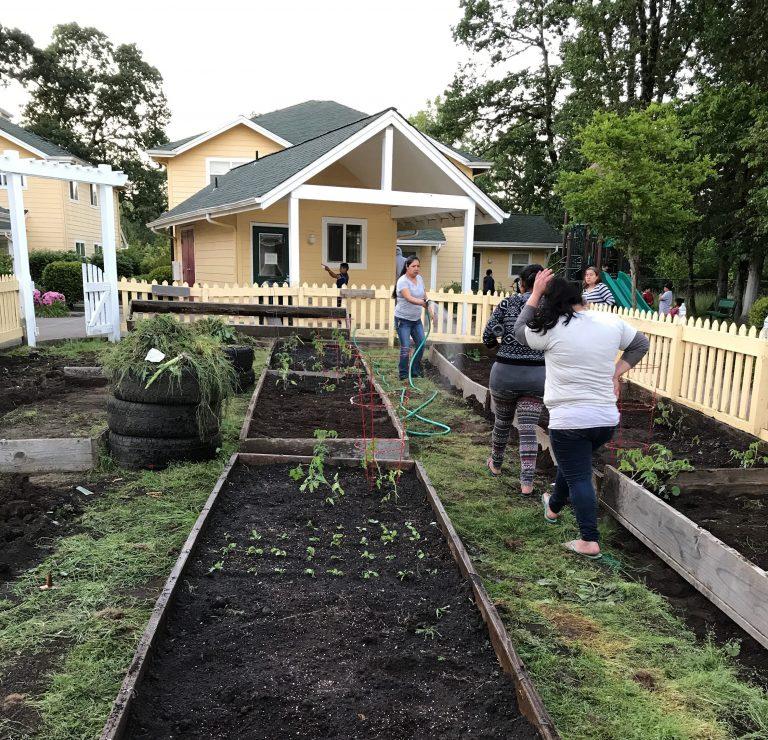 Colonia Amistad community garden