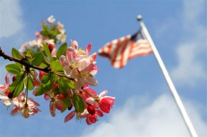 The American Flag with some flowers