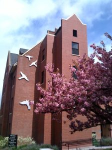 Todd Hall pictured from the side, blooming pink tree in frame, and building wall pictured to display large bird mural.