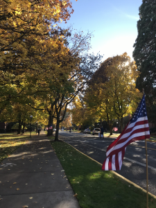 American flags waving in the wind, lining a street with autum leaves