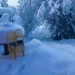 snowshoes in snow bank