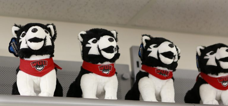 Four toys of the Wolfie mascot.