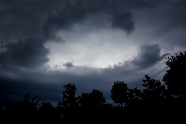 A dark gray sky with clouds and a silhouette of many trees along the bottom of the photograph