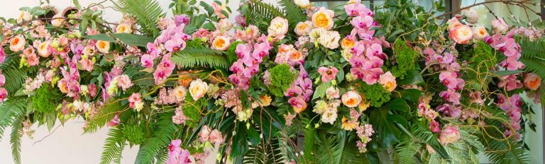 Bright yellow, pink, and orange flowers stand out against dark green foliage